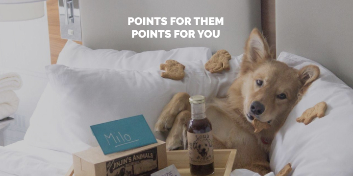 Invite your friends to Stash Hotel Rewards. The best loyalty program for boutique hotels.